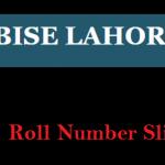 Bise Lahore Board Matric Roll Number Slip