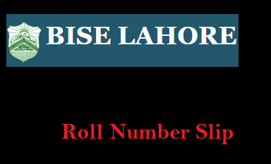 Bise Lahore Board Matric Roll Number Slip